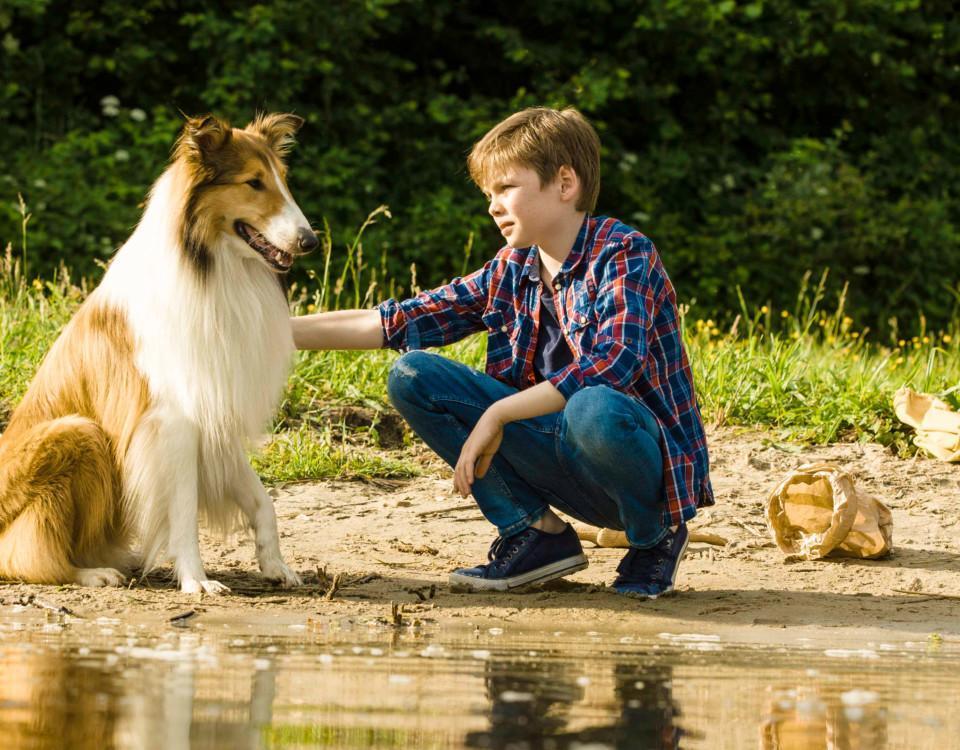 hund och pojke