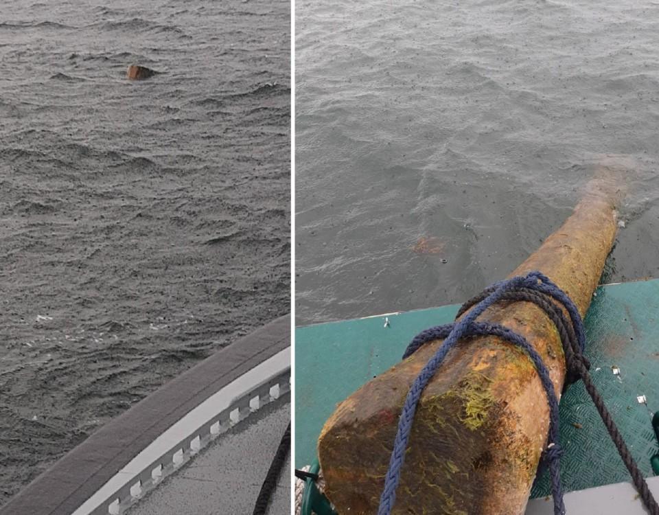 En tvådelad bild som visar en stock som sticker upp ovanför vattenytan och en stock som bärgas.