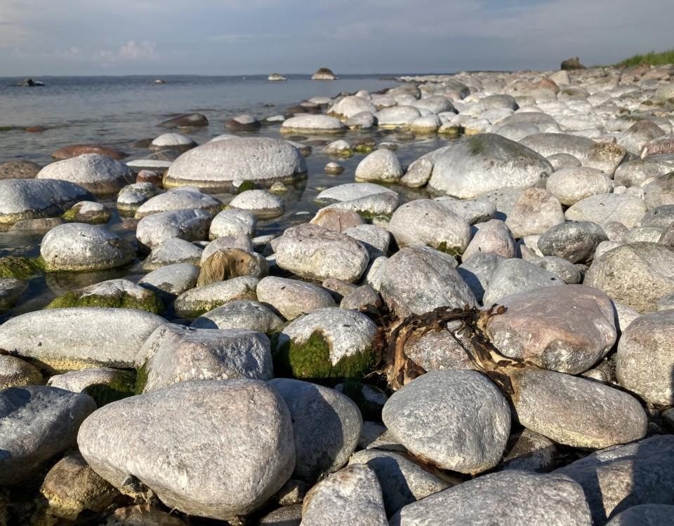 En strand med stenar.