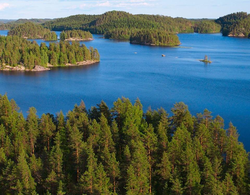 Sjö och skog.