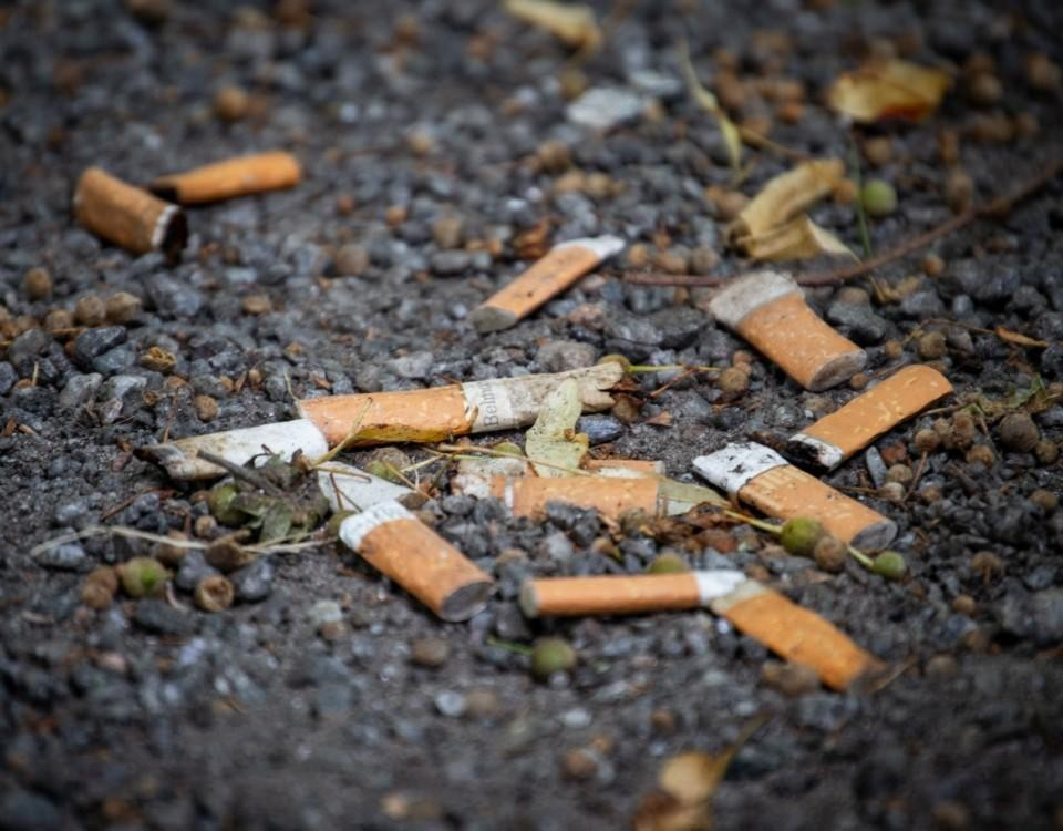 Tobaksfimpar