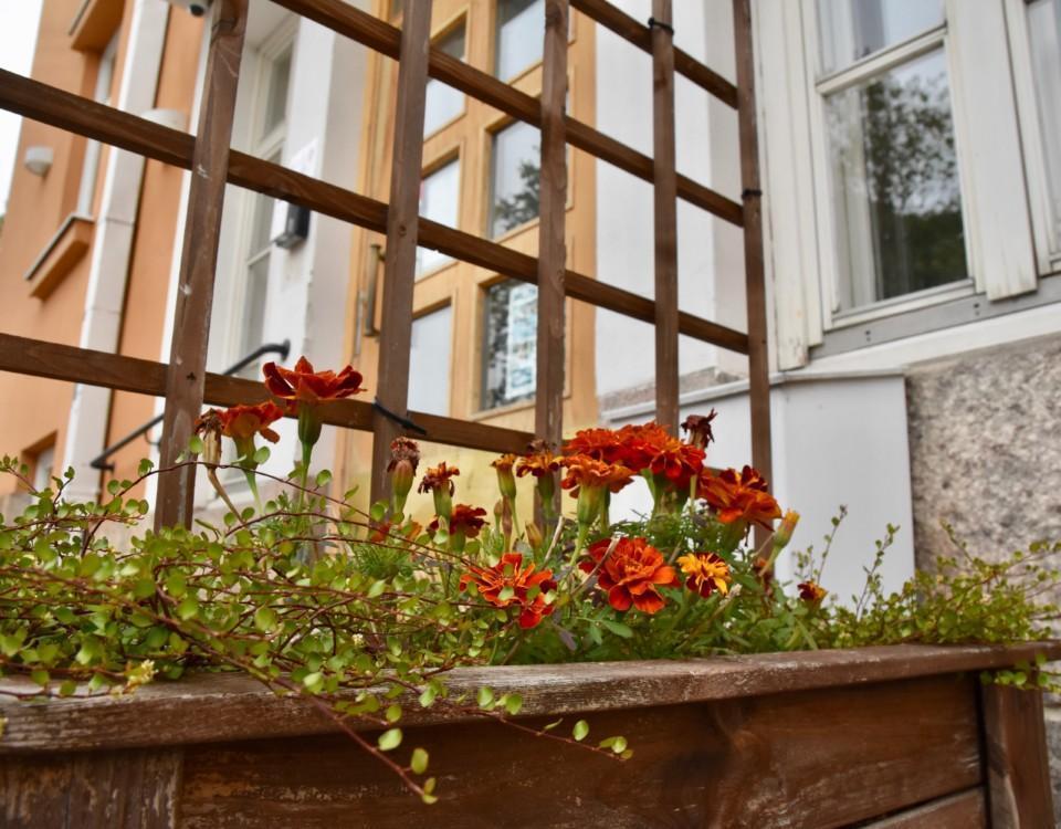 blommor framför gult hus