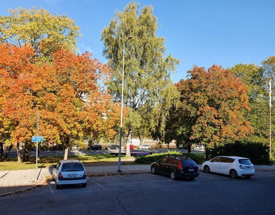 lummiga träd och parkeringsplats i Åbo
